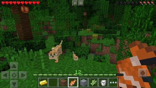 دانلود Minecraft Pocket Edition 1.17.0.56 بازی ماینکرافت اندروید + مود