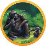 دانلود Conservation Crisis 1.8.2 بازی اندروید بحران در پارک جنگلی