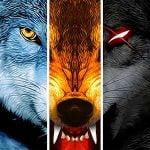 دانلود Wolf Online 3.2.7 بازی اکشن و ماجرایی شبیه سازی زندگی گرک آنلاین اندروید + مود + دیتا