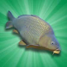 جدید دانلود Carp Fishing Simulator 1.9.8.3 بازی شبیه ساز ماهیگیری اندروید + دیتا
